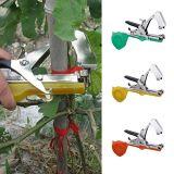 Main d'outil pour bande d'agriculture attachant la machine pour la tomate de vigne de légume fruit