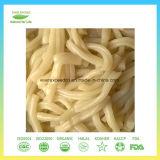 Pastas Konjac cero Spagetti Konjac del alimento inmediato de la caloría