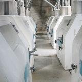 Roller Mill/Low Price Wheat Flour Millet Seedling
