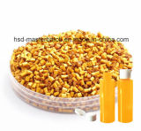 Gele Masterbatch voor het AcrylEffect van de Fles van het Huisdier met Uitstekende kwaliteit