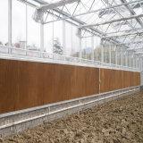 Avícola almofada de resfriamento evaporativo parede com estrutura em liga de alumínio