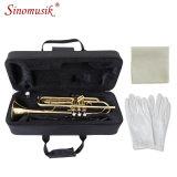 De Gouden Trompet van uitstekende kwaliteit voor het Instrument van Brasswind van de Toon van BB van de Verkoop