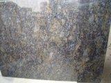 Losas de granito azul mariposa&Mosaicos pisos de granito&Albañilería