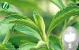 Stevia-Auszug-Puder Stevioside 95% Stevia-Zucker