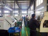 Montaggio di tubo flessibile di Qingdao Bsp/adattatore idraulici maschii (1B)
