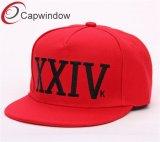 100% acrílicotapa Snapback/Hat con 3D o plana bordadosXXIV