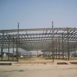 Costruzione della struttura d'acciaio/gruppo di lavoro/magazzino struttura d'acciaio