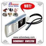 Dispositivo Portátil, ultra-sonografia Veterinária Scanner portátil com bateria recarregável, bom preço