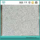 الصين [غ603] صوّان رماديّ [لونا] بيضاء [غرينت] حجارة/غطاء/أرضيّة/يرصف/قراميد/ألواح/صوّان
