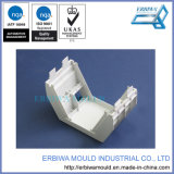 Белые пластиковые изделия, ЭБУ системы впрыска пресс-форма с высоким точное
