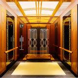 Ascenseur Ascenseur résidentiel Fujizy prix fournisseur d'Usine chinoise