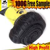 Отсутствие линяя бразильских волос двигателя черных