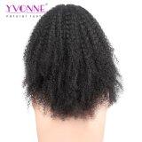 Ивонна горячей стиле бразильского Virgin Afro-Kinky вьющихся волос человека кружева Wig передней панели