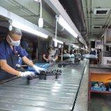 Bateria acidificada ao chumbo de Indonésia Mf 6V 5.5ah
