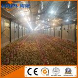 Equipo de la granja avícola para la casa de la avicultura