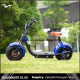 1500W Harley Citycoco 스쿠터 2 지방질 바퀴 전기 스쿠터, 성숙한 전기 기관자전차 LED 표시등