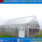 Multispan 수경법 PC 장 농업 온실