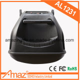 draagbare Spreker 12inch Bluetooth van Guangzhou Temeisheng