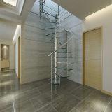 Innengewundenes Treppenhaus-Glasentwurf mit Edelstahl-Handlauf