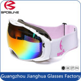 Beschermende brillen UV400 WindEyewear van de Motorfiets van de Sporten van het Spel van PC van de Beschermende brillen van de ski de Beschermende Openlucht