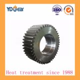 Metallurgical Industry Reducer에 작은 Module Transmission Gear Wheel Used