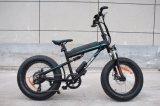 取り外し可能な電池との山様式20インチの電気自転車