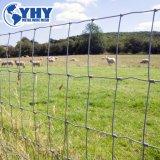 固定ヒンジ接合箇所フィールド塀の牛農場の網の塀