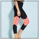 Изготовленный на заказ Nylon кальсоны Капри женщин гетры пригодности гимнастики оптовой продажи Spandex