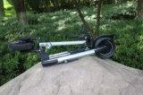 F/Rの中断60V/20ahが付いている600W合金の電動機の蹴りのスクーター