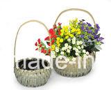 Cestino del fiore del truciolo con la maniglia per la decorazione domestica