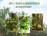 Naturals de Drank van Sporten --- Het Poeder van het Water van de kokosnoot
