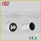 Lumière de rail haute qualité White & Black LED Down Tube