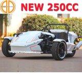 Mc-369 Quanlity Bode garantiu novo CEE 250cc Ztr Não Roadster para venda 3 Wheeler Motociclo