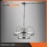 Doppelte hängende Lampe der Großhandelsaluminiumacrylbeleuchtung-3000k des Ring-LED