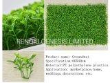 Parete artificiale delle piante di alta qualità fatta in Cina
