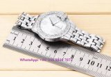 Het vrij Modieuze Horloge van het Kwarts met de Riem Fs581 van het Roestvrij staal