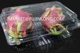 Automatischer Plastikfrucht-Behälter, der Maschine herstellt