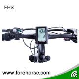電気バイクキットのためのEバイクLCDの表示