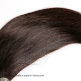 Jungfrau-brasilianisches Menschenhaar-gerade natürliche Haar-Webart