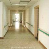 Barandilla montada en la pared de la desventaja del pasillo del hospital del PVC de la seguridad estable