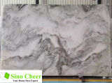 Multi laje por atacado do mármore da cor, preço de mármore branco da laje em India
