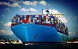 Профессионал консолидирует обслуживания зазора таможен экспорта в Китае