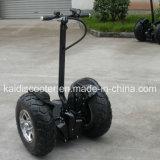 Quattro motorino grasso di crociera della gomma 48V 12ah 700W del motorino delle rotelle E