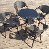 優美の余暇の庭の表および藤の椅子は屋外のためにセットした(SP-CT838)