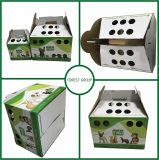Gewölbtes Papier-Katze-Träger-Kasten mit Griff kundenspezifisch anfertigen