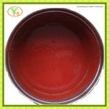 Alimento conservado conservado marca de fábrica de la goma de tomate de Gino