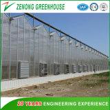 Serra dello strato del PC di Multispan di agricoltura della Cina per vari tipi di prodotti di sistema idroponici