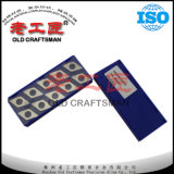 Calço econômico Dnmg 432 do carboneto cimentado de padrão de ISO