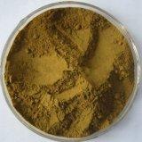 L'estratto verde oliva del foglio è usato per il trattamento di malaria