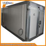 Fournisseur industriel de four d'enduit de poudre de chauffage de LPG
